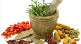 Ưu việt khi dùng thảo dược chữa bệnh viêm loét dạ dày tá tràng